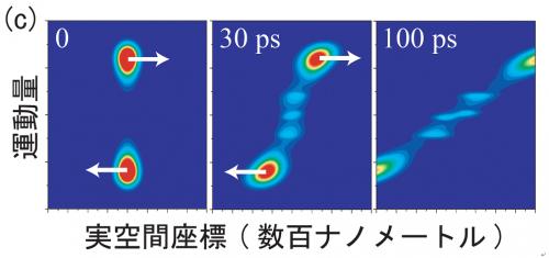 ナノ領域における光と電子の結合がもたらす新奇現象の物理