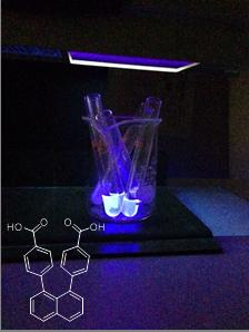 新規有機分子変換反応と機能性材料の探索