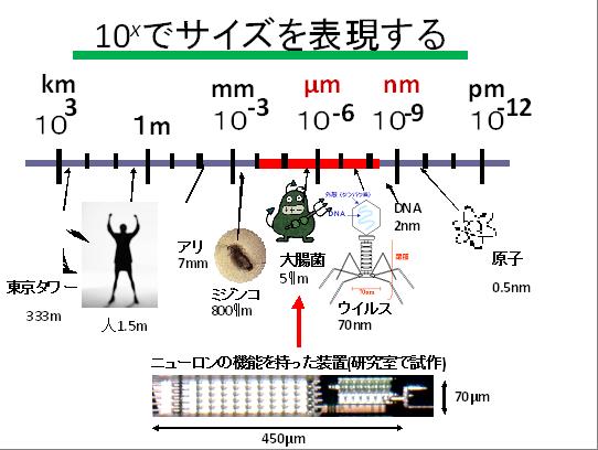 マイクロデバイスの特性解析と高機能化