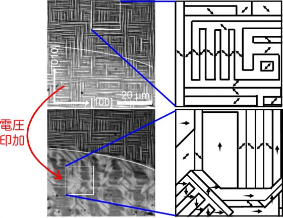 機能性無機材料の作製と評価